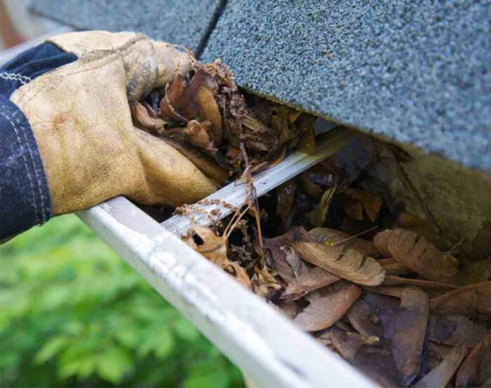 Dirty Gutters Need Love Too